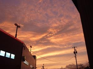 2010907_8.JPG