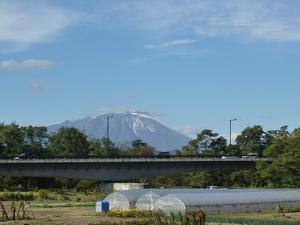 20101029_3.JPG