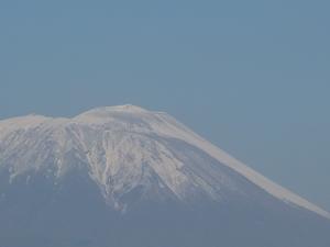 20101113_2.JPG